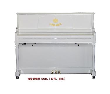 123DJ 白色、亮光  官网标价28800元